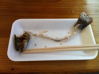 岩魚食後.JPG